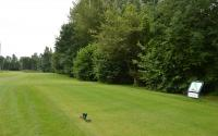 Renovatie green hole 14 afgerond
